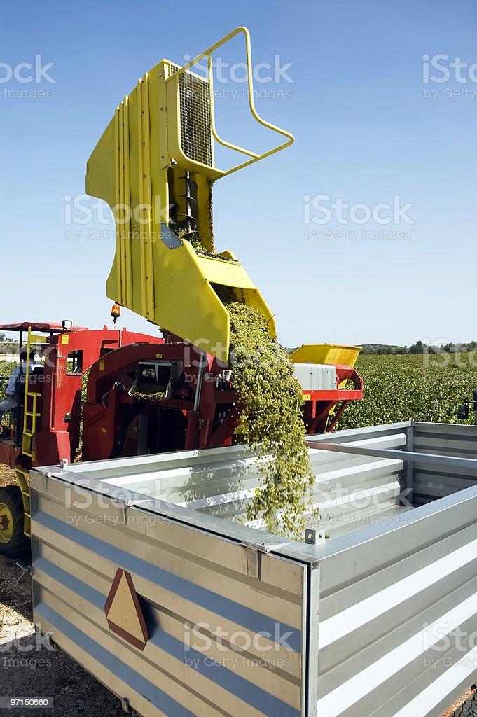 Grape harvesting machinery royalty-free stock photo