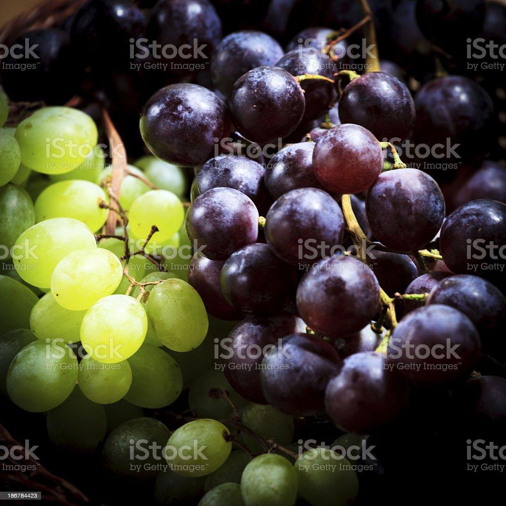 grape macro royalty-free stock photo