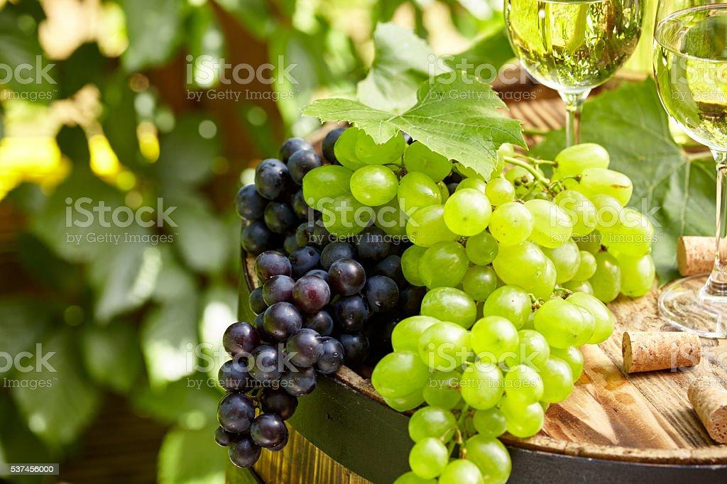 Grape on a wooden barrel. stock photo
