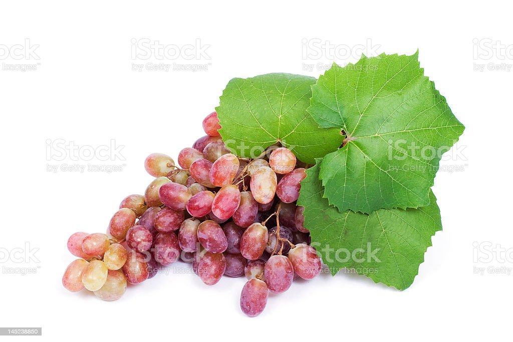 Grape royalty-free stock photo
