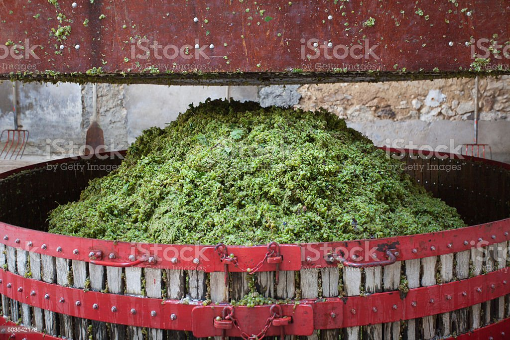 Grape press stock photo