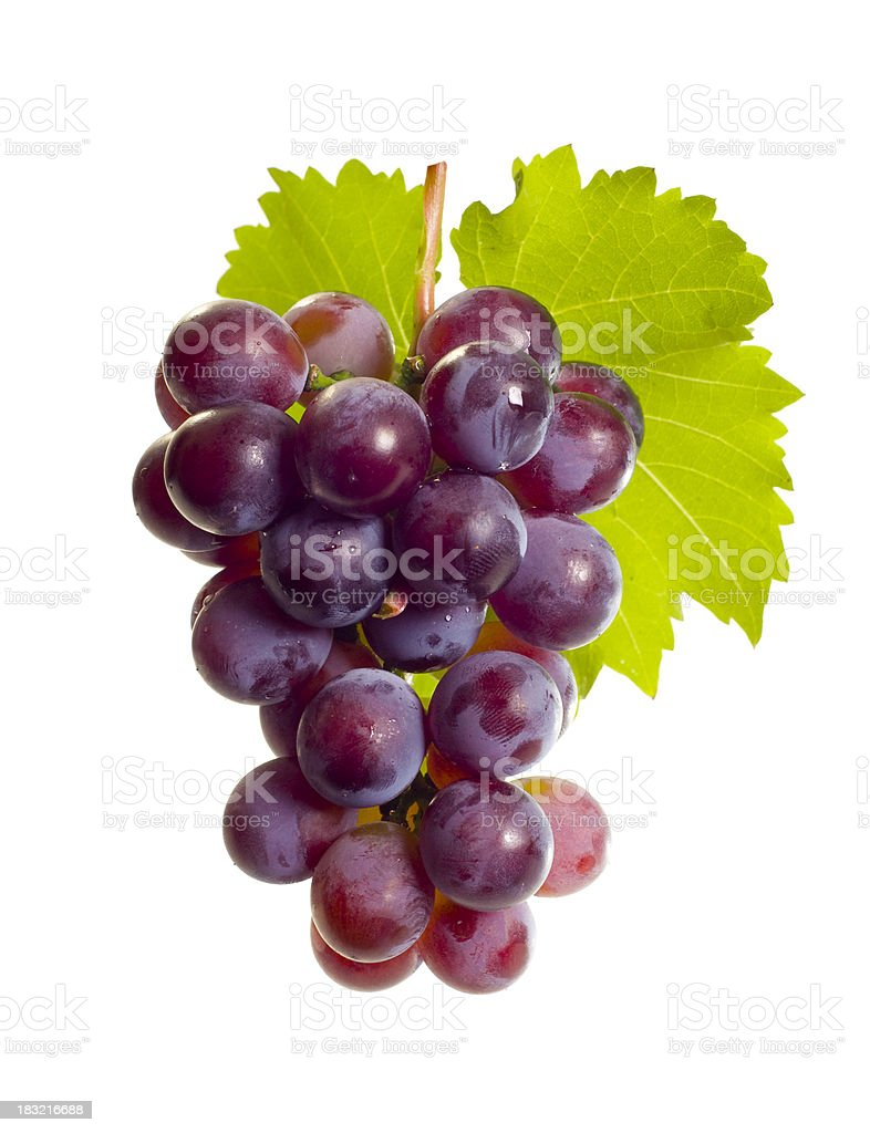Grape with leaf stock photo