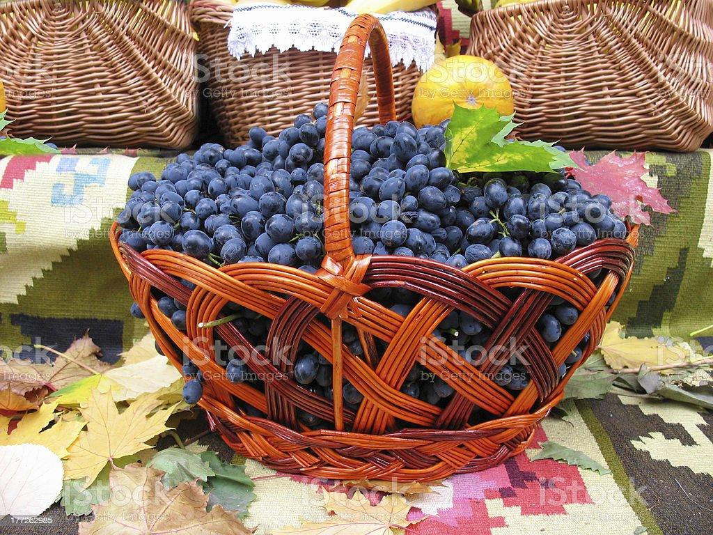 Uvas no cesto. Grapevine de Carpete foto de stock royalty-free