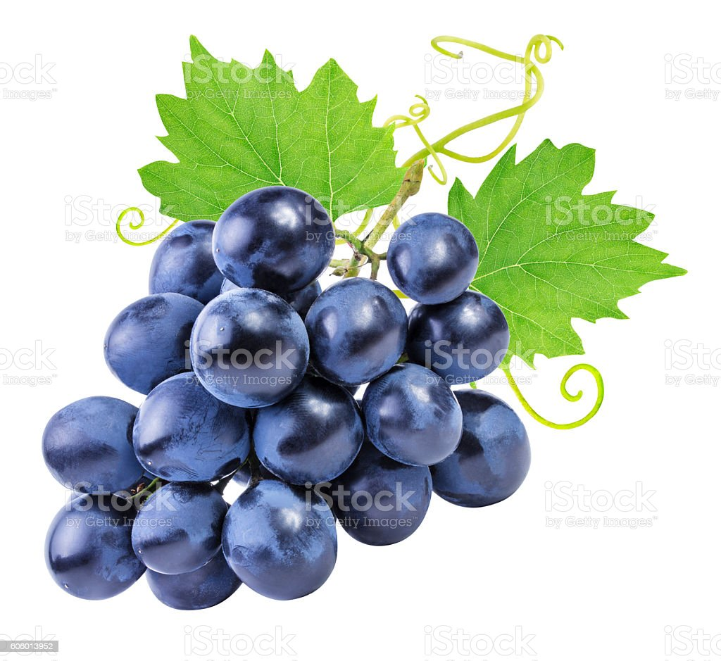 grapes Isolated on the white stock photo