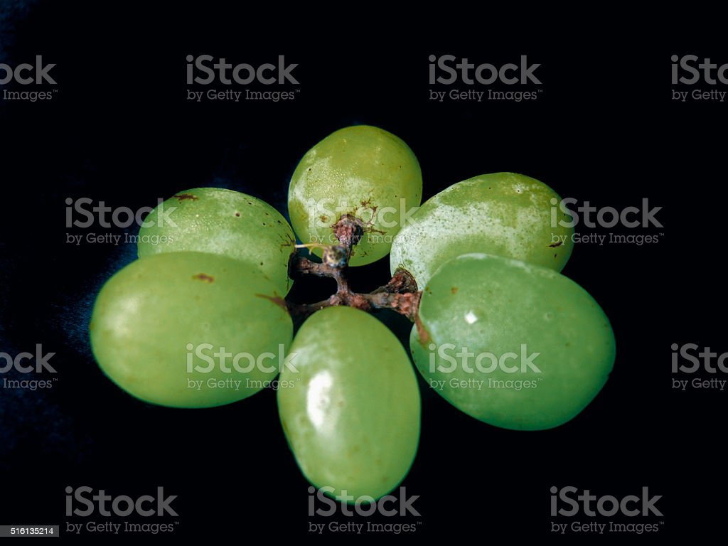 Grapes, Vitis vinifera, the Classic Berry stock photo