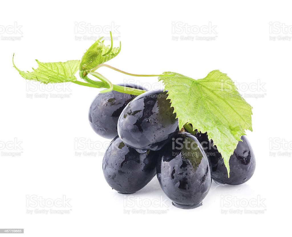 Grapes with leaves stock photo