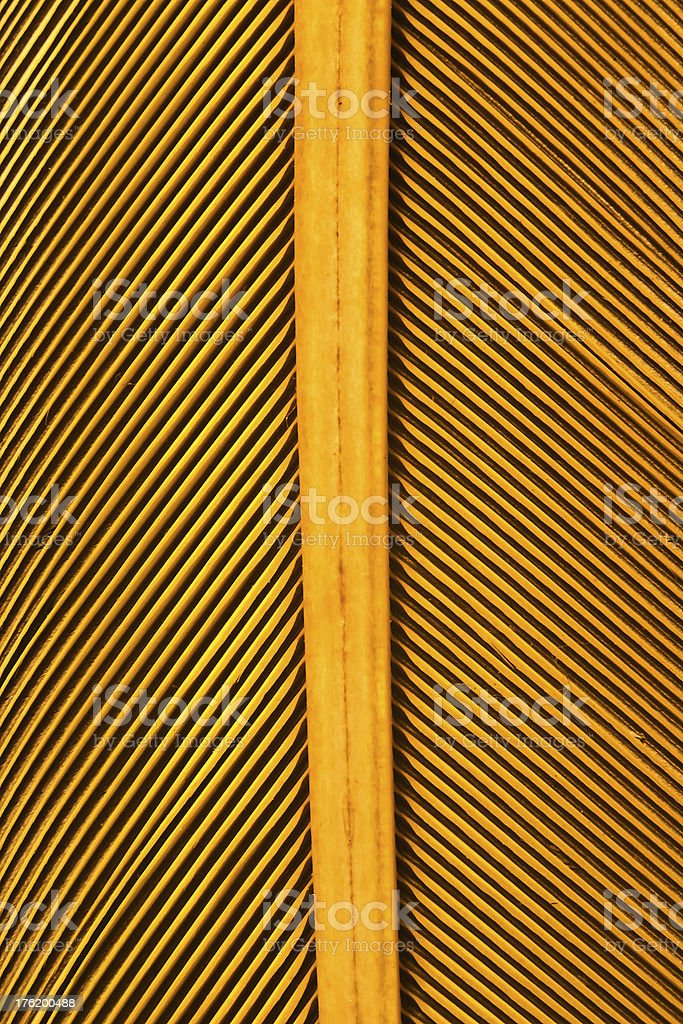 graphic detail of yellow feather royalty-free stock photo
