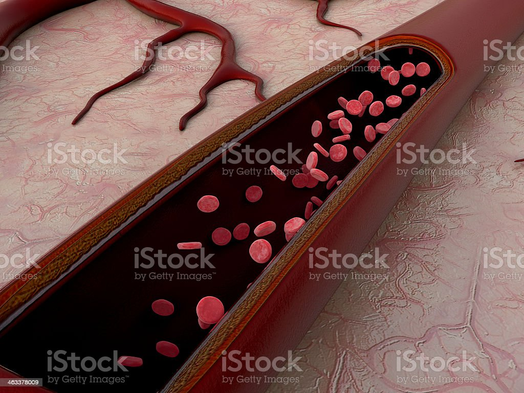 Graphic of open artery displaying the red blood cells inside stock photo