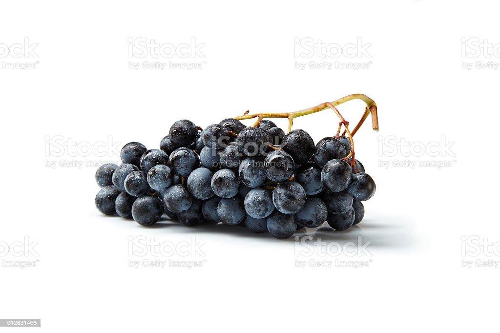 Grappolo di uva con gocce d'acqua stock photo