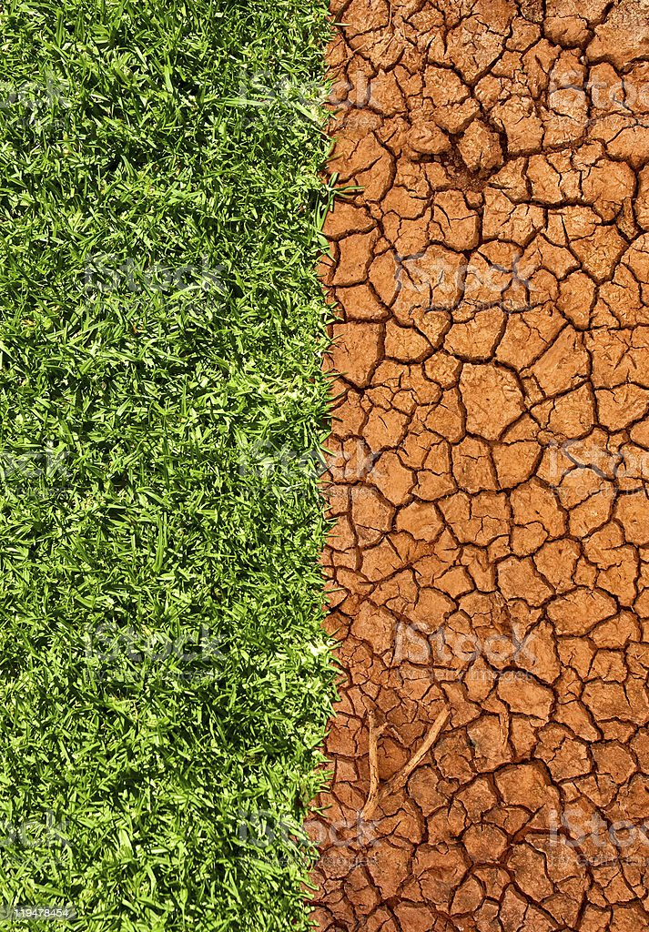 Grass and cracked desert sand royalty-free stock photo