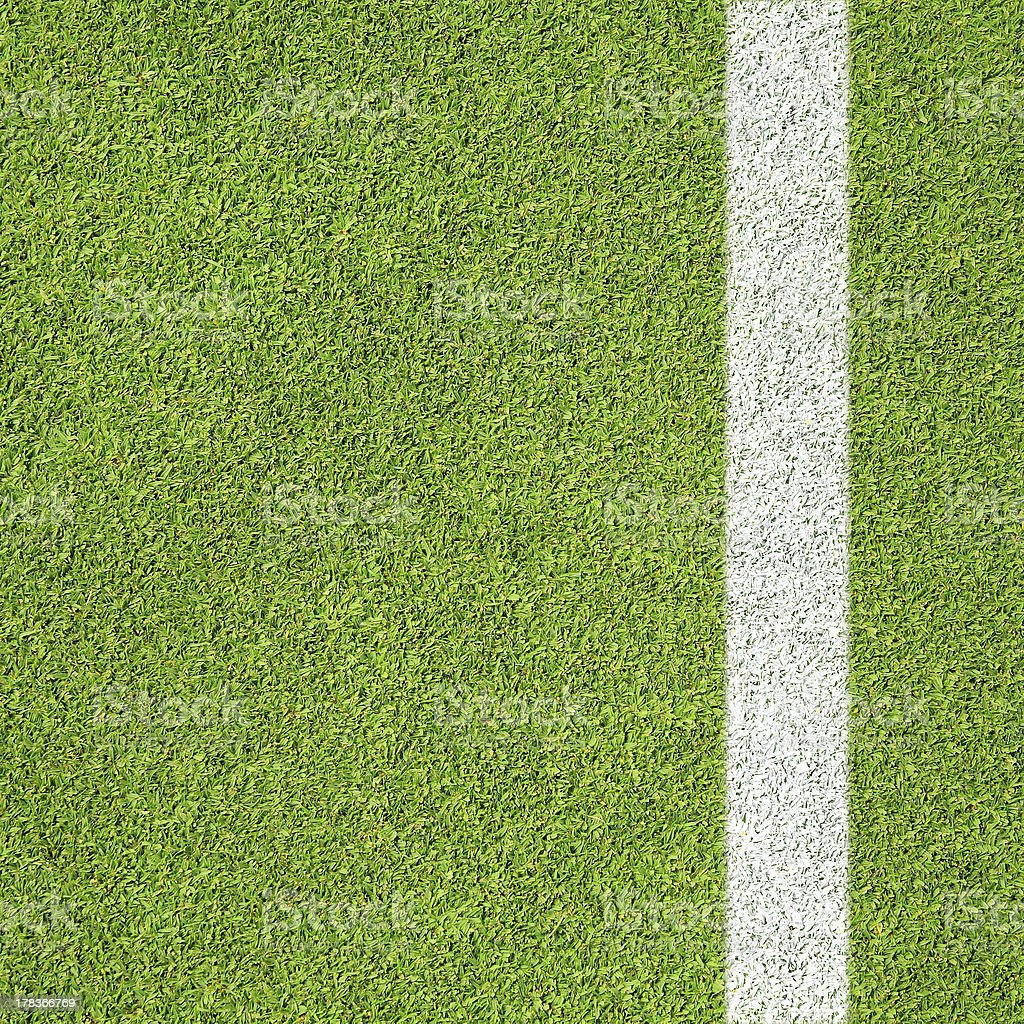 Grass and Line royalty-free stock photo