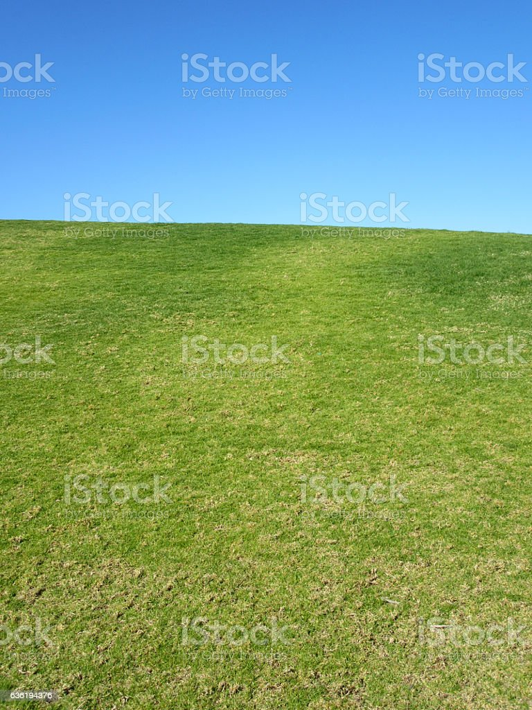 Grass and Sky Natural Background stock photo