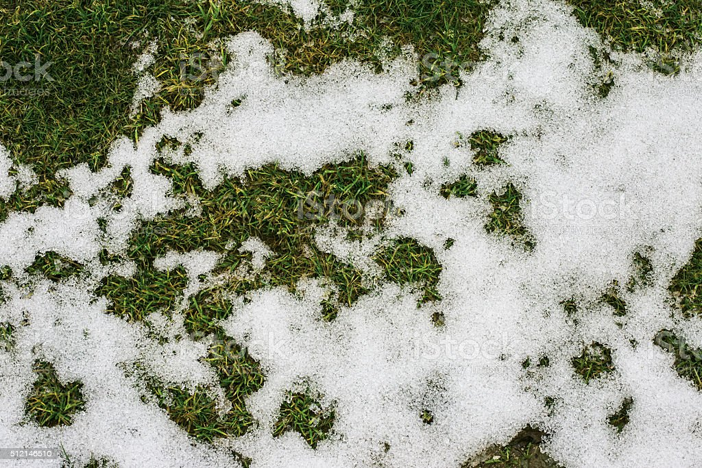grass and snow in spring stock photo