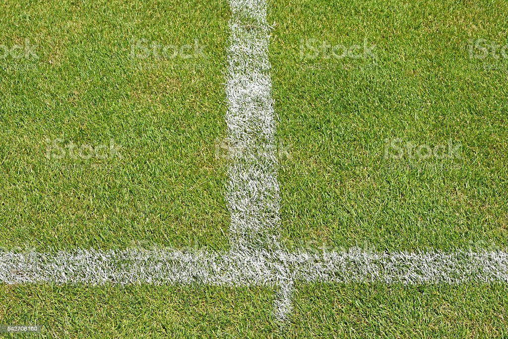 Grass and stripes of the soccer field stock photo