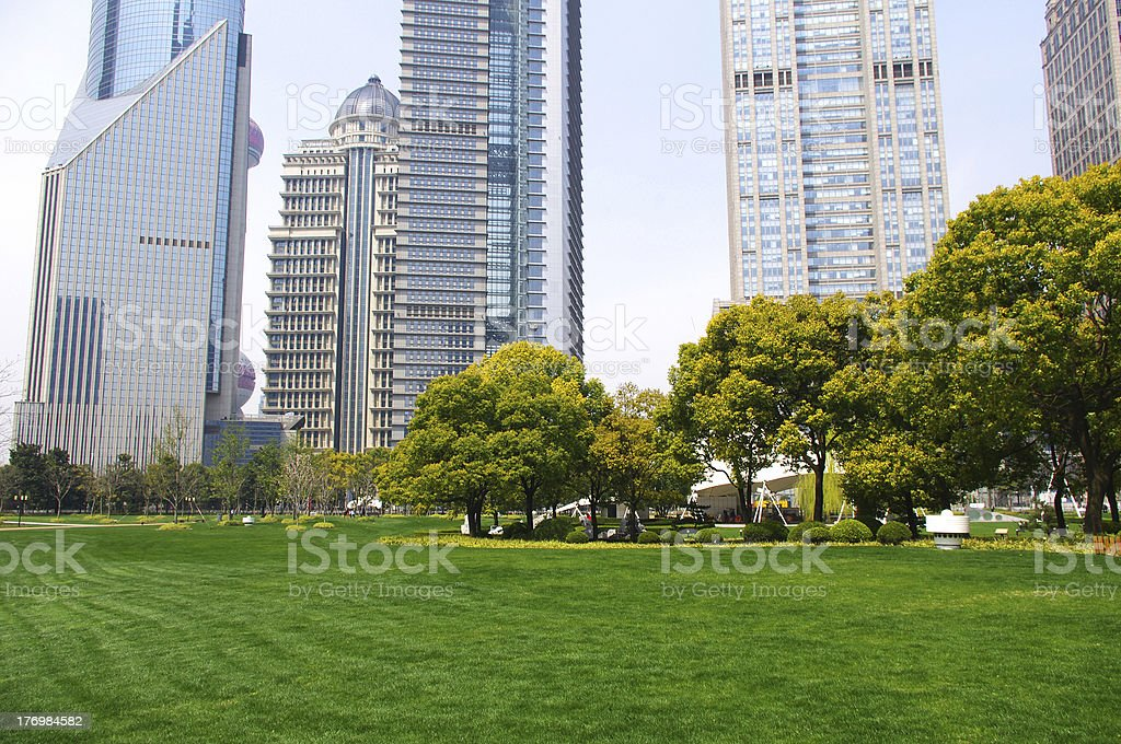 Grass and tall buildings royalty-free stock photo