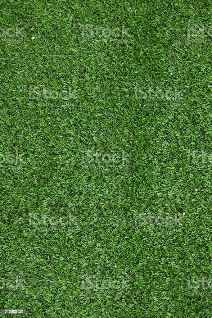 Grass Background Environment Field stock photo