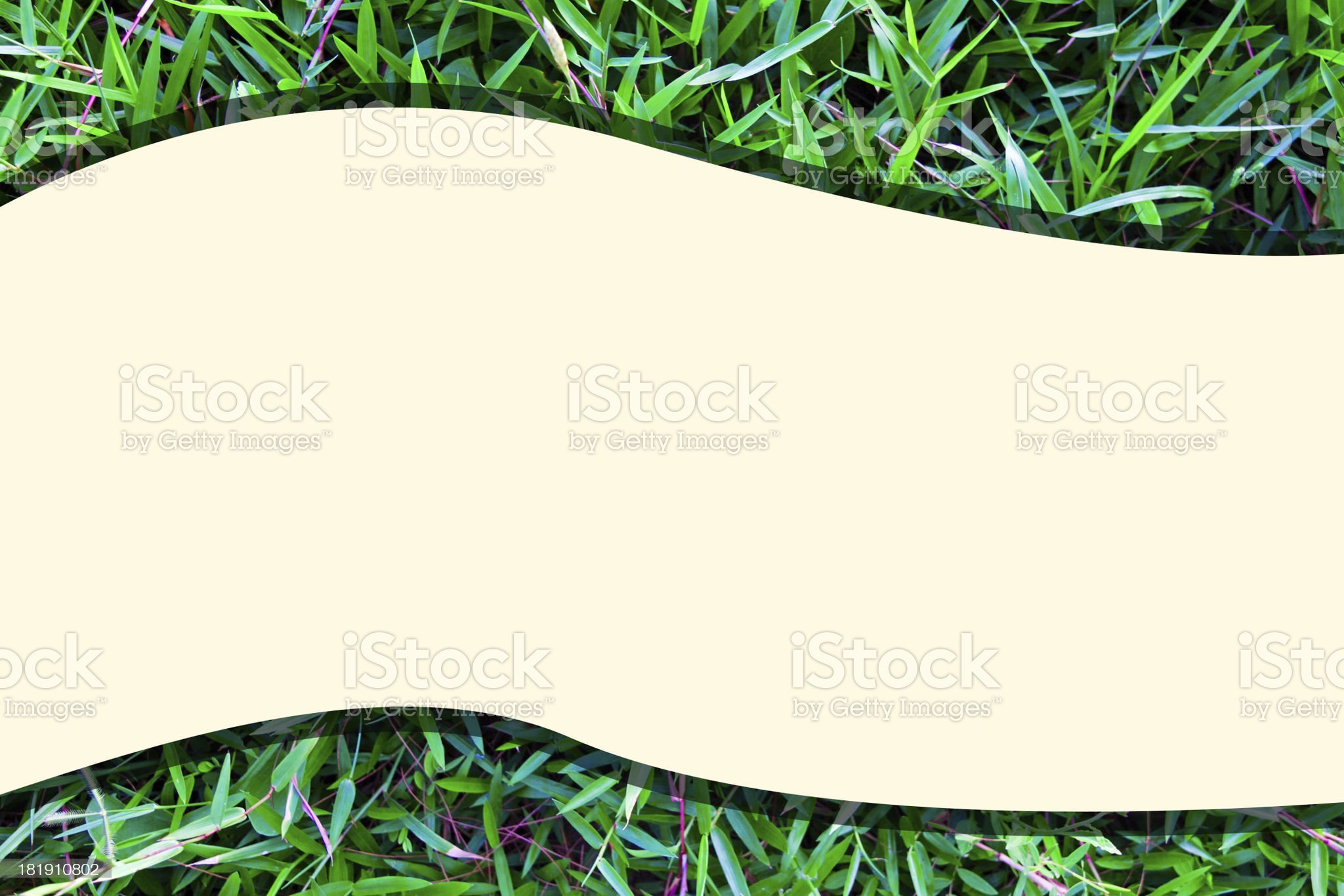 Grass background layout royalty-free stock photo