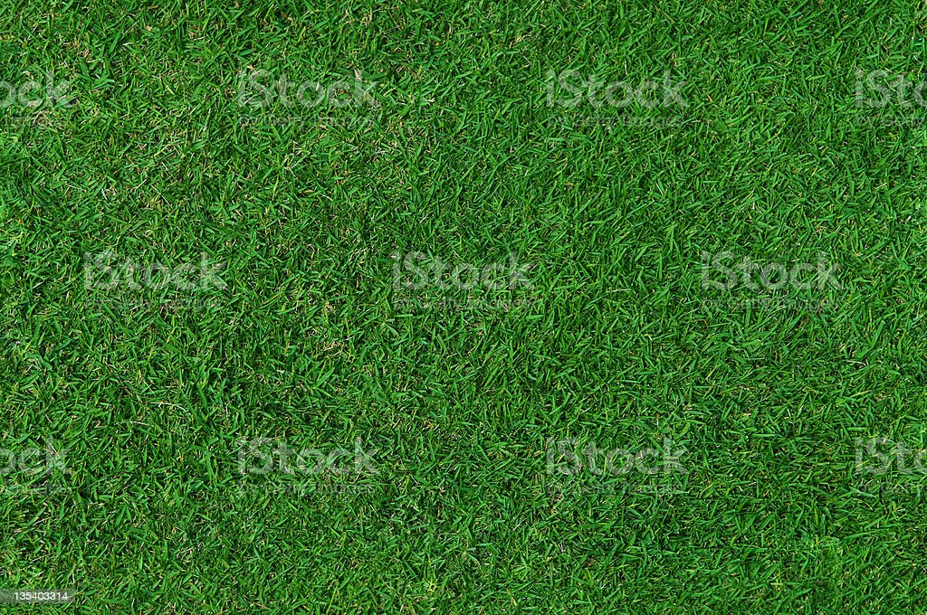Grass Background (Seamless) royalty-free stock photo