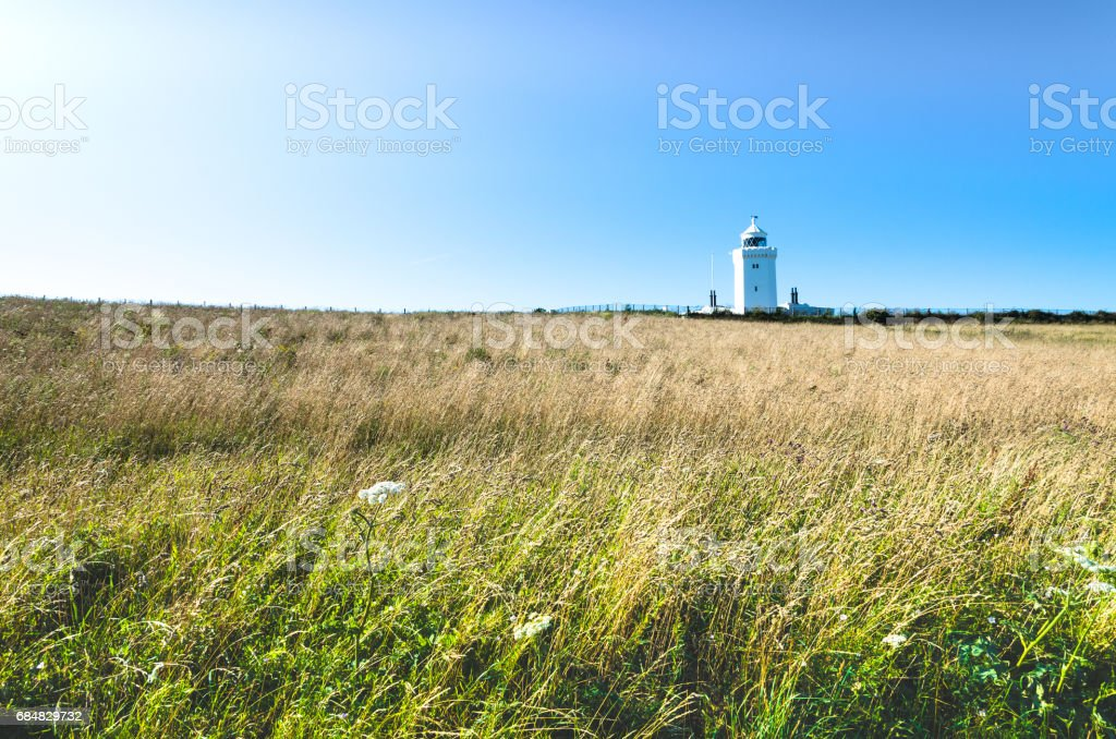 Grass bends in the wind at the South Foreland Lighthouse in summer stock photo