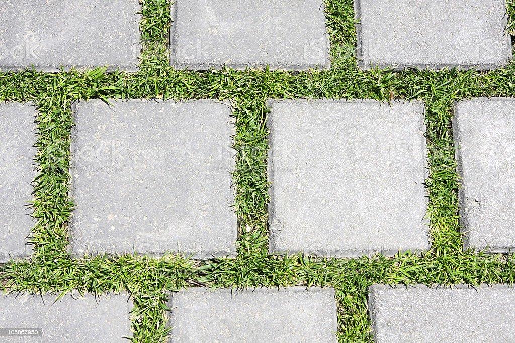 Grass betreen stones royalty-free stock photo
