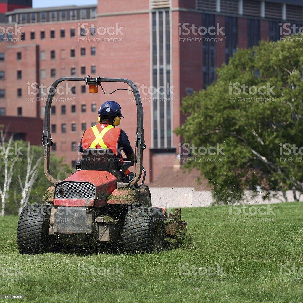 Grass Cutter stock photo