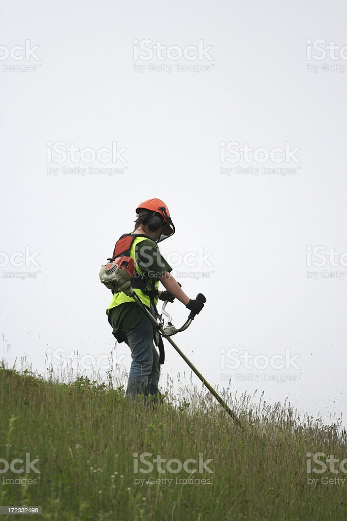 Grass Cutter, Series - 4 royalty-free stock photo