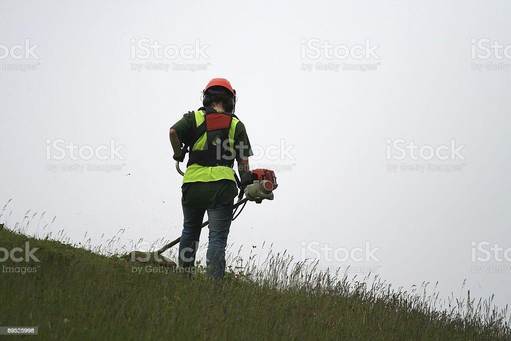 Grass Cutter, Series - 5 stock photo