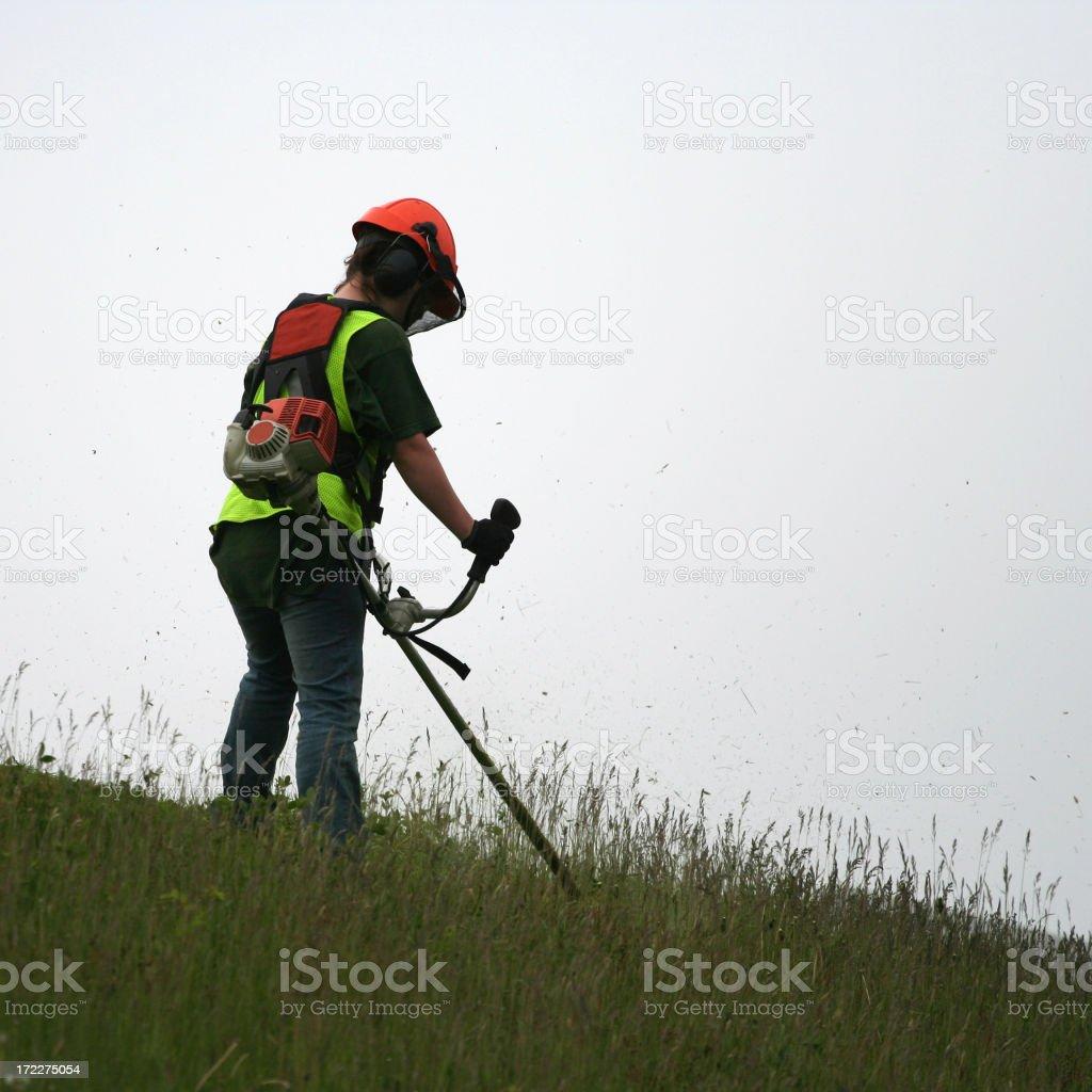 Grass Cutter, Series - 6 stock photo