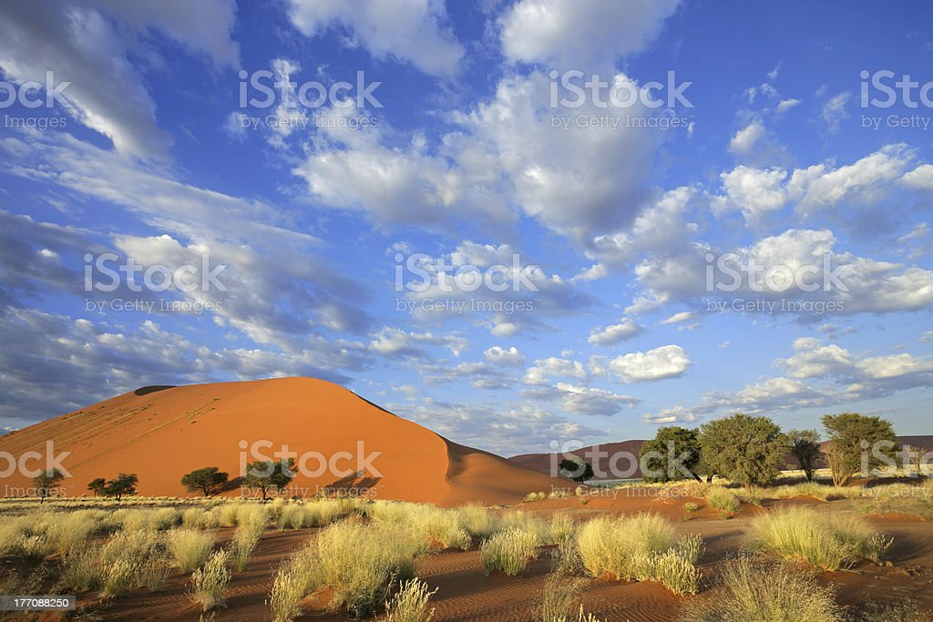Grass, dune and sky stock photo