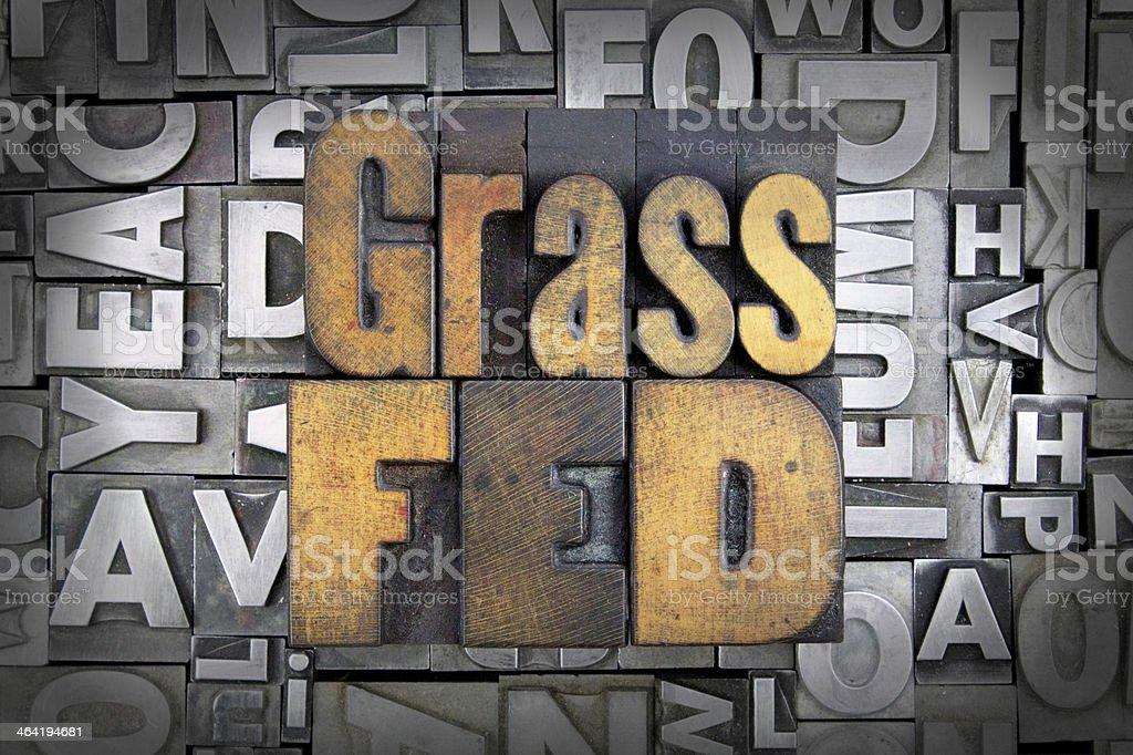 Grass Fed stock photo