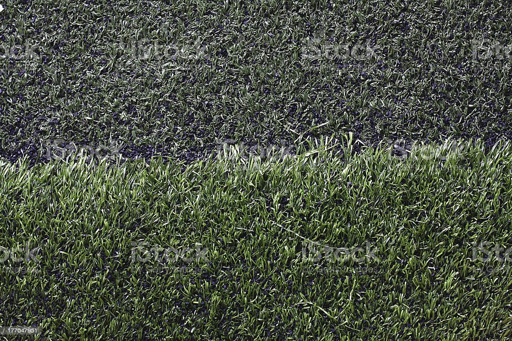 Grass football field with gravel. royalty-free stock photo