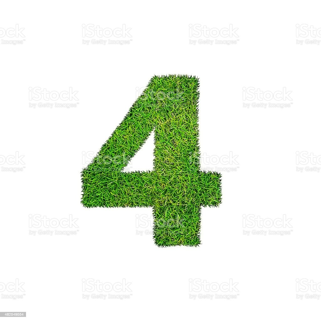 grass four 4 isolated on a white background stock photo