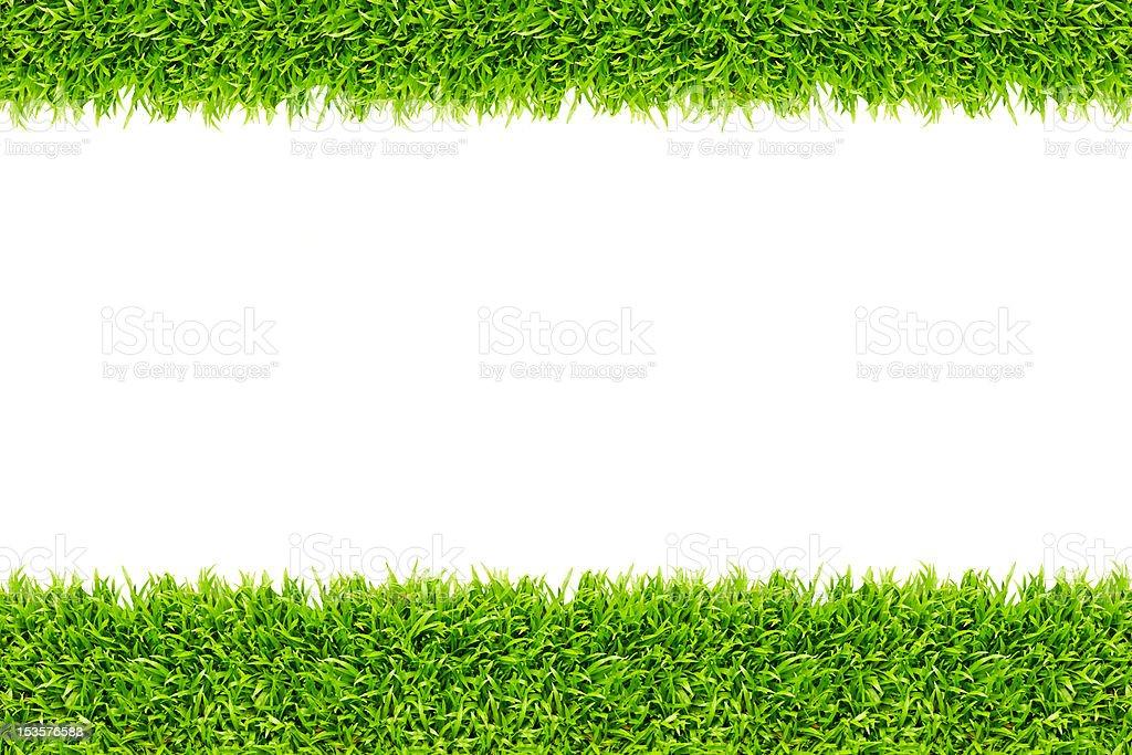 Telaio di erba isolato per sfondo foto stock royalty-free