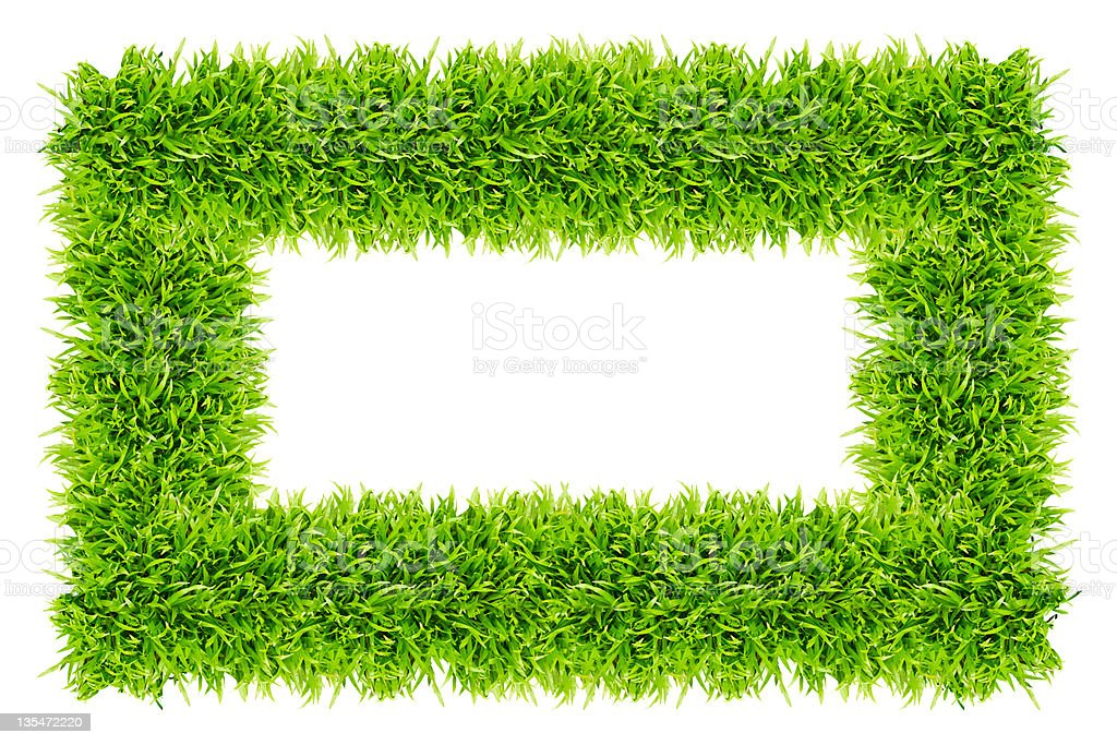 Telaio di erba isolato foto stock royalty-free