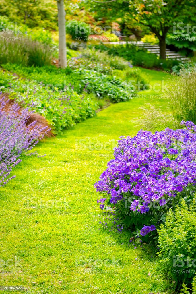 Grass Garden path stock photo