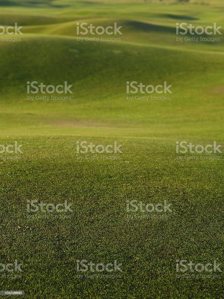 Grass, green and rolling golf course. stock photo