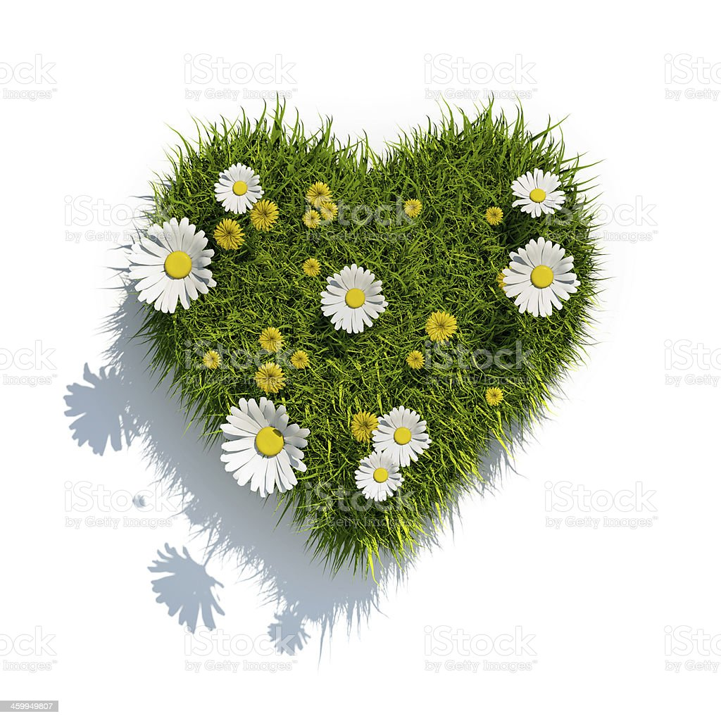 grass heart on white background stock photo