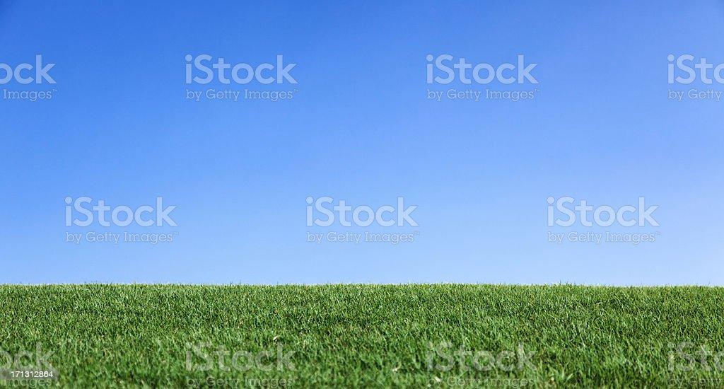 Grass hill perfect blue sky horizon stock photo