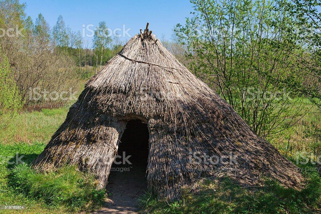 Grass hut stock photo
