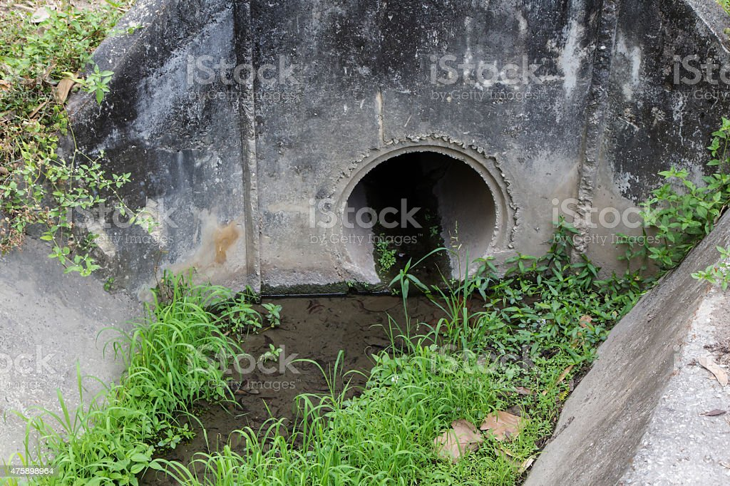 Grass in old drainage channel royalty-free stock photo