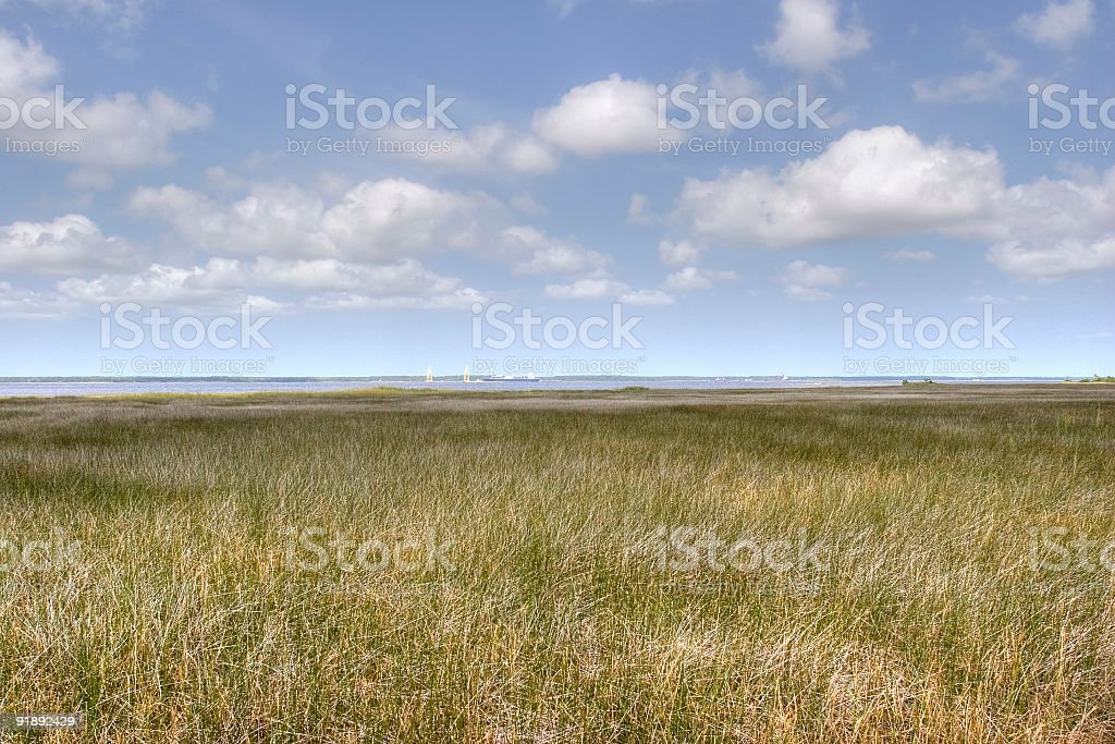 Grass Land and Clouds royalty-free stock photo