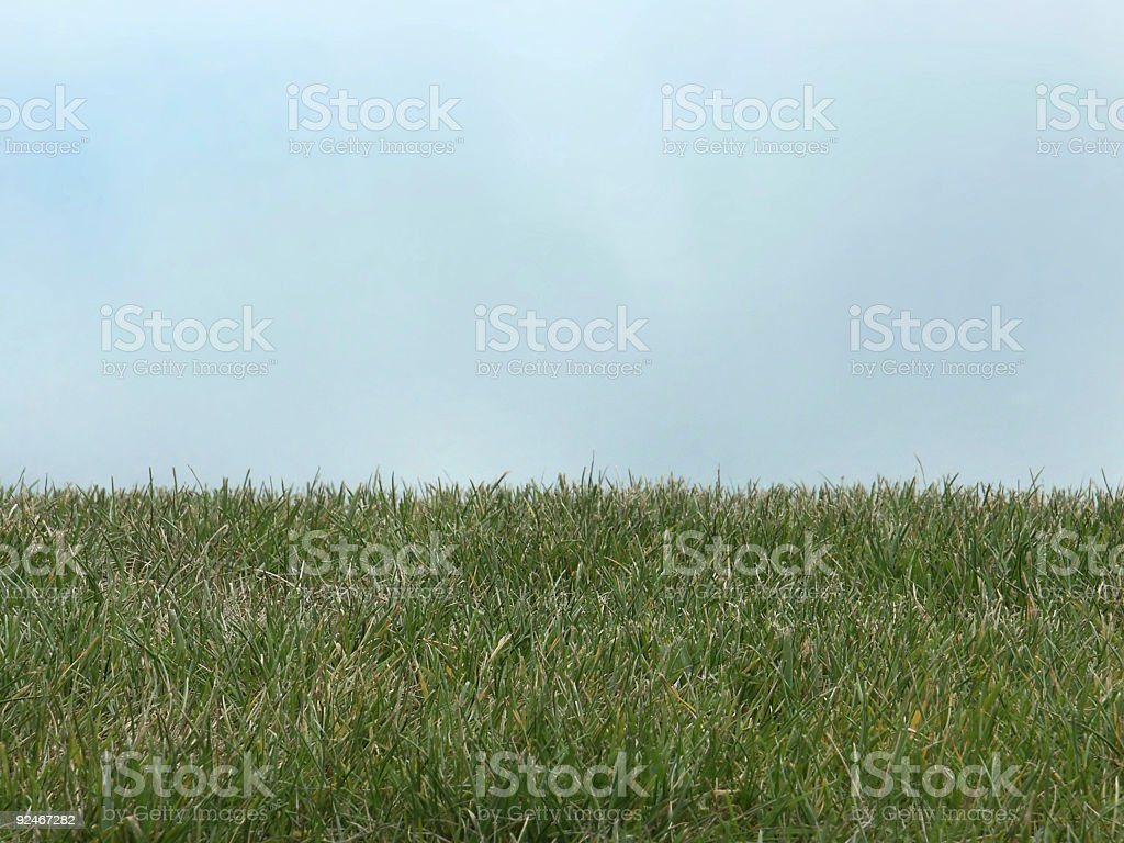 Grass Lawn Against Sky stock photo