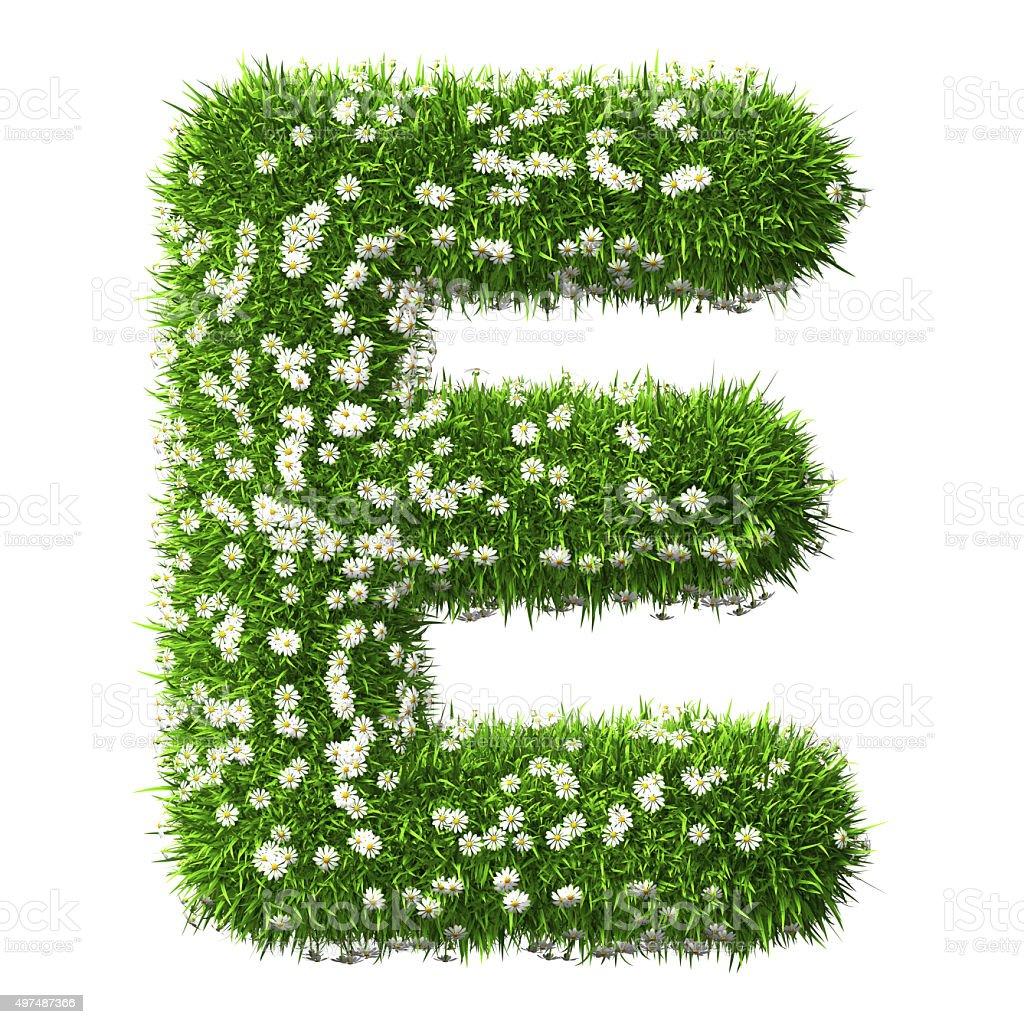 Grass Letter E stock photo