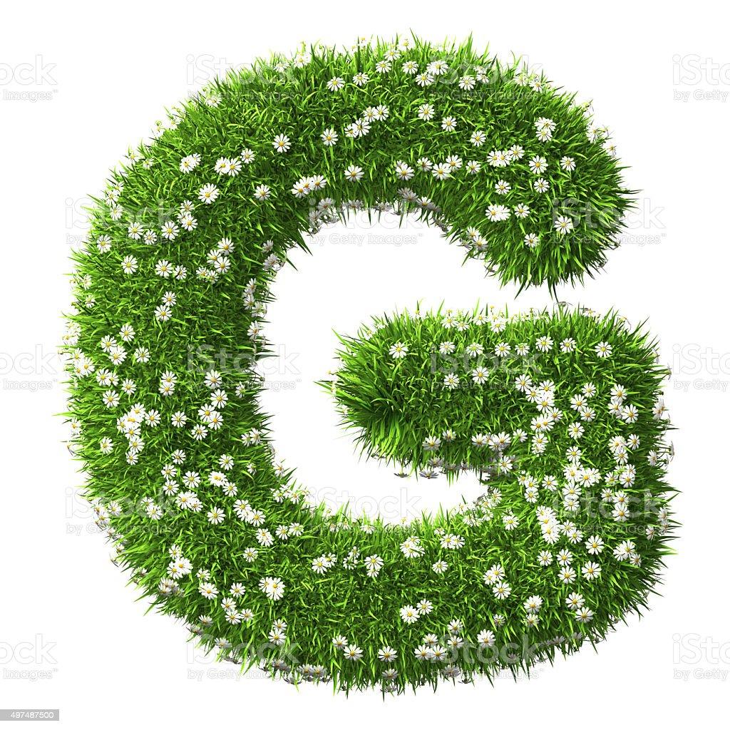 Grass Letter G stock photo