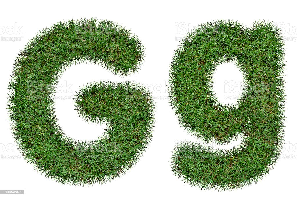 Grass Letter G,g  isolated on white background stock photo