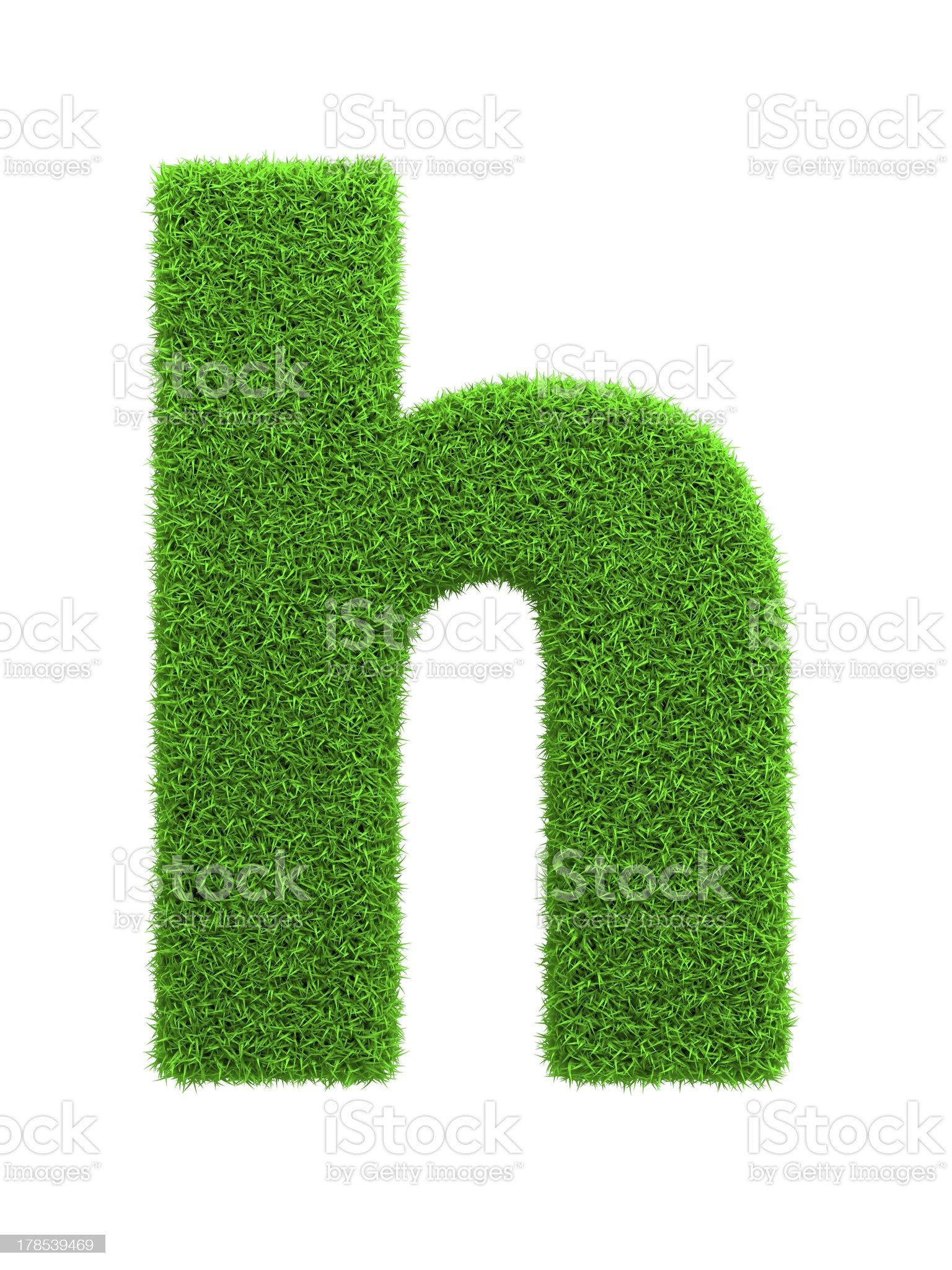 Grass Letter Isolated on White. royalty-free stock photo