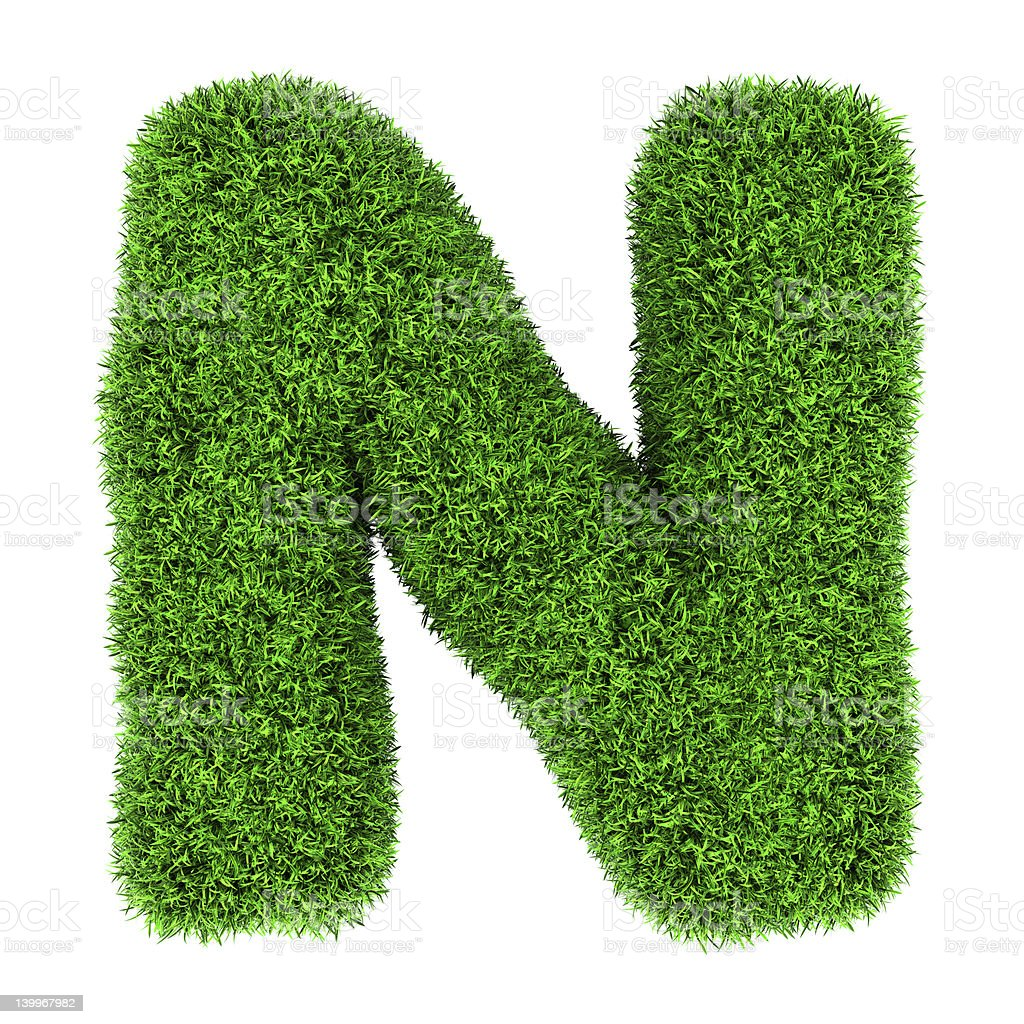 Grass letter N royalty-free stock photo