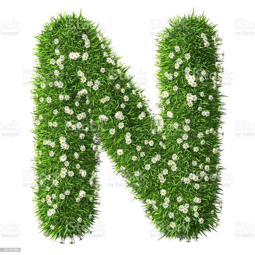 Grass Letter N stock photo