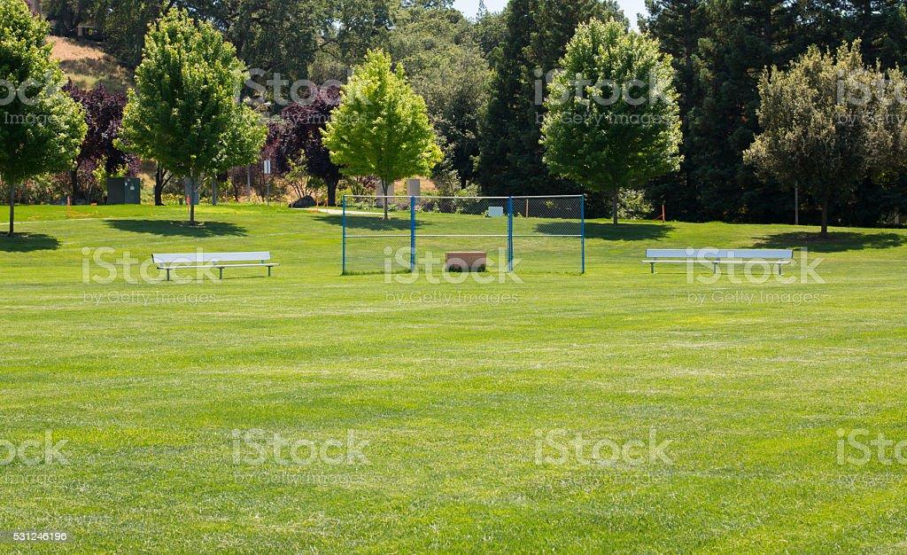 Grass Little League Baseball Field stock photo