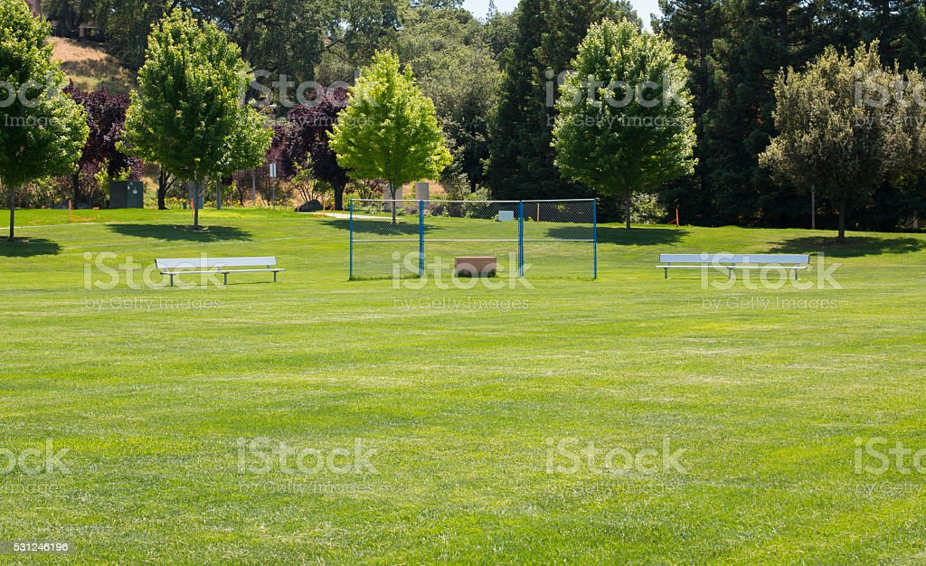 Grass Little League Baseball Field stock photo